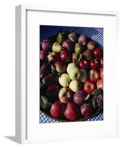 Pears and Varieties of Apples in a Bowl at the Tilth Festival in Seattle-Sam Abell-Framed Art Print