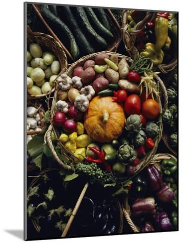 Various Vegetables in a Basket at the Tilth Festival in Seattle-Sam Abell-Mounted Photographic Print