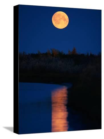 Moonrise over the Delta-Raymond Gehman-Stretched Canvas Print
