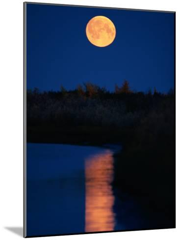 Moonrise over the Delta-Raymond Gehman-Mounted Photographic Print