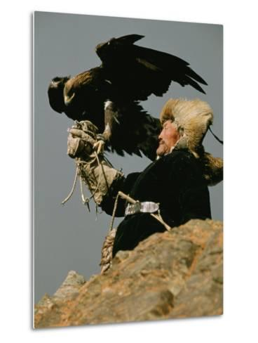 A Kazakh Man Supports His Trained Golden Eagle-David Edwards-Metal Print
