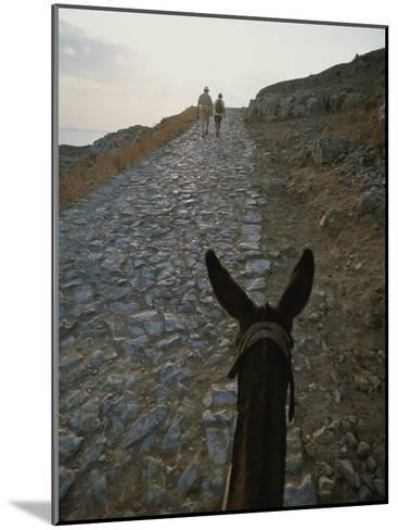 A Couple and a Donkey Walk up the Cobblestone Road to the Acropolis-Tino Soriano-Mounted Photographic Print
