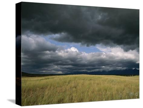 Dark Clouds Gather over a Prairie in the National Bison Range-Annie Griffiths Belt-Stretched Canvas Print