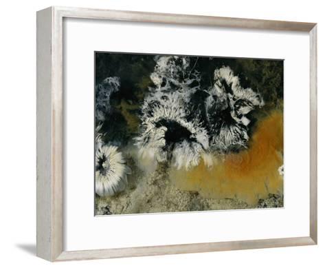 Colonies of Filamentous Bacteria in an Uzon Hot Spring-Peter Carsten-Framed Art Print
