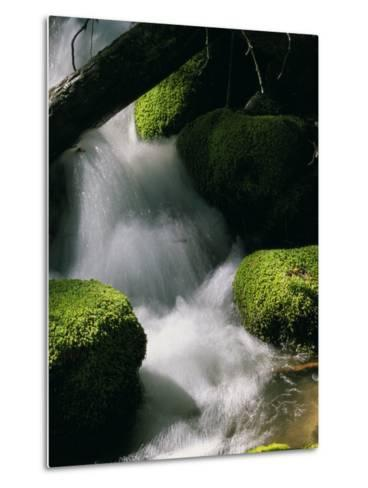 Creek Rushing Over Moss-Covered Stones-Marc Moritsch-Metal Print