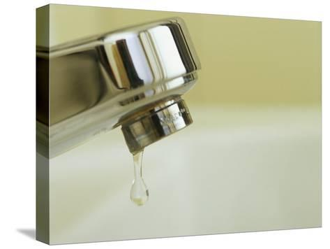 Water Dripping from a Leaking Bathroom Faucet, Wasting Water-Taylor S^ Kennedy-Stretched Canvas Print