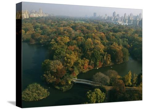 Aerial View of Central Park and the Manhattan Skyline in the Fall-Melissa Farlow-Stretched Canvas Print
