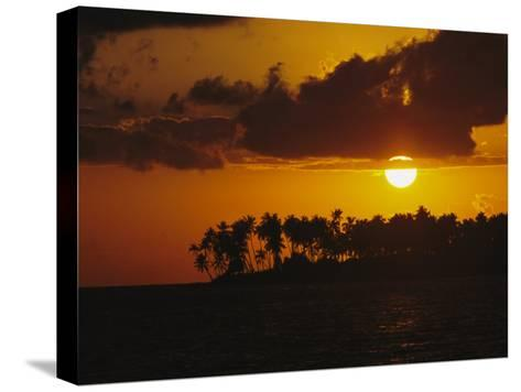 Silhouetted Palm Trees and Sun Behind Clouds at Twilight-Tim Laman-Stretched Canvas Print