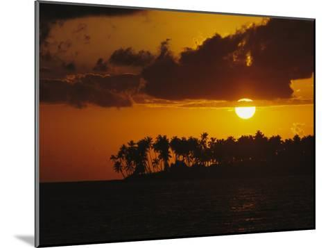 Silhouetted Palm Trees and Sun Behind Clouds at Twilight-Tim Laman-Mounted Photographic Print