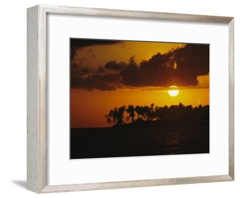 Silhouetted Palm Trees and Sun Behind Clouds at Twilight-Tim Laman-Framed Art Print