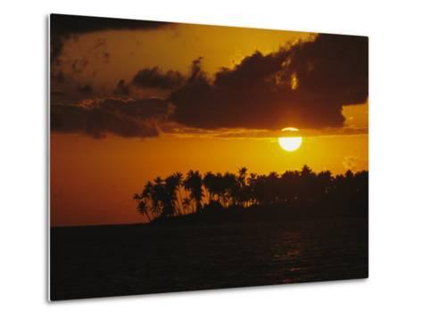 Silhouetted Palm Trees and Sun Behind Clouds at Twilight-Tim Laman-Metal Print