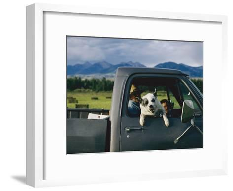 A Dog Snarls at the Photographer-Joel Sartore-Framed Art Print
