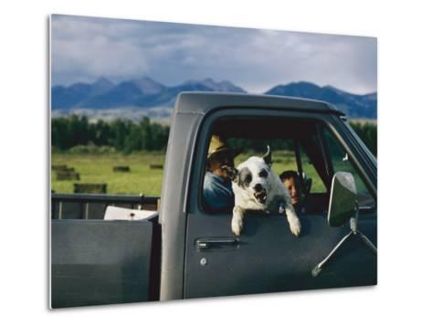 A Dog Snarls at the Photographer-Joel Sartore-Metal Print
