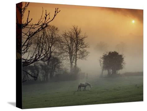 The Countryside Around Swansea, Birthplace of Dylan Thomas-Farrell Grehan-Stretched Canvas Print