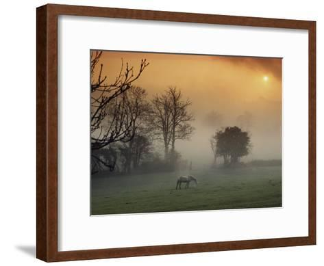 The Countryside Around Swansea, Birthplace of Dylan Thomas-Farrell Grehan-Framed Art Print