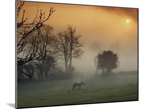 The Countryside Around Swansea, Birthplace of Dylan Thomas-Farrell Grehan-Mounted Photographic Print