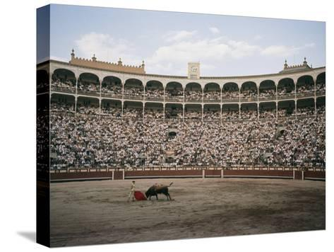 A Bullfight in Madrid-Walter Meayers Edwards-Stretched Canvas Print