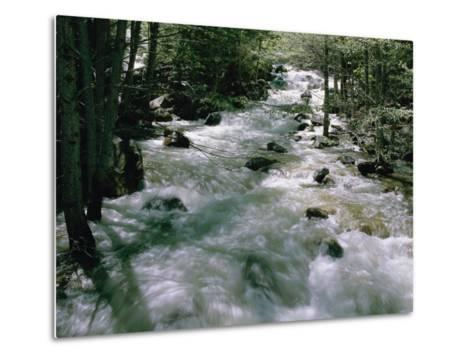 Water Cascading Down a Forest Creek-Marc Moritsch-Metal Print