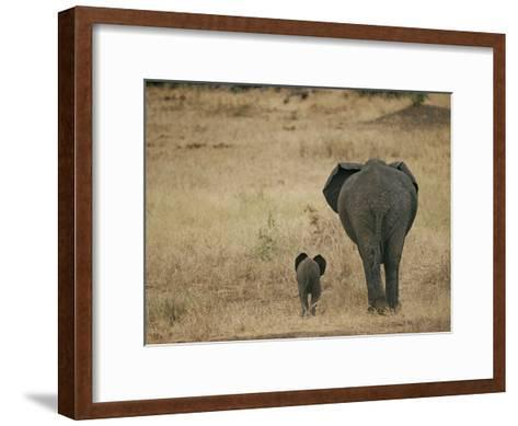 A Juvenile African Elephant and its Parent Walk off into the Savanna-Roy Toft-Framed Art Print