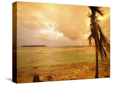 A Tropical Beach Scene with an Island in the Background-Kate Thompson-Stretched Canvas Print