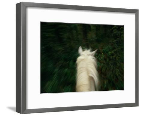 Panned View of a Saddle Horse from Above-Raymond Gehman-Framed Art Print