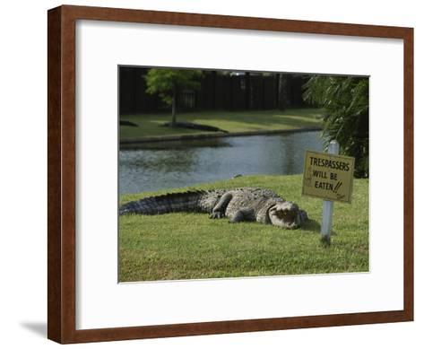 An American Alligator on a Lawn Next to a Humorous Warning Sign-Raymond Gehman-Framed Art Print