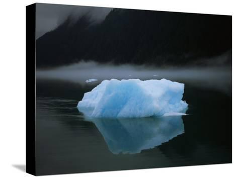 A Blue Iceberg and its Reflection in Calm Water-Ralph Lee Hopkins-Stretched Canvas Print