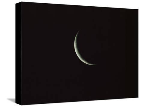 Sliver of the Moon during the New Moon Phase in Dark Black Sky-Tim Laman-Stretched Canvas Print
