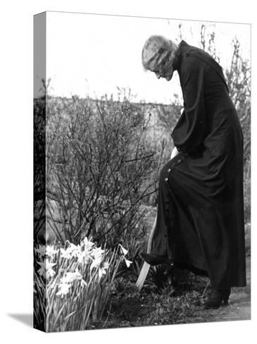 Madame Maud Gonne MacBride Working in Her Garden-John Phillips-Stretched Canvas Print