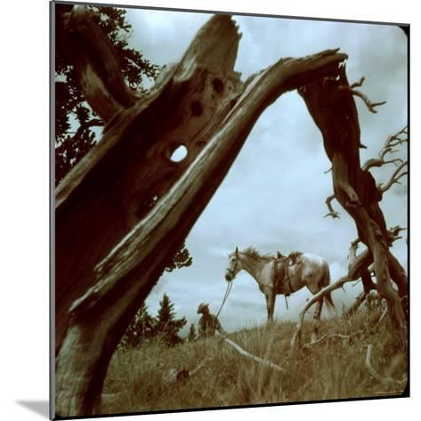 Rancher Leading Horse Across Field as Seen Through Branches of Fallen Tree, Trinchera Ranch-Loomis Dean-Mounted Photographic Print