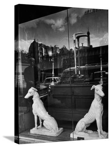 Ceramic Hounds in Window of Antique Shop-Alfred Eisenstaedt-Stretched Canvas Print