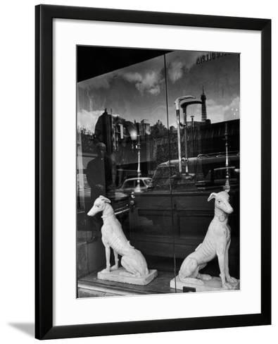 Ceramic Hounds in Window of Antique Shop-Alfred Eisenstaedt-Framed Art Print