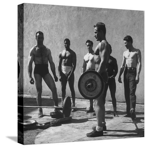 Prisoners at San Quentin Weightlifting in Prison Yard During Recreation Period-Charles E^ Steinheimer-Stretched Canvas Print