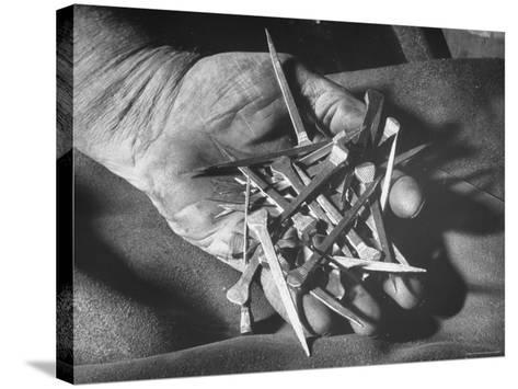 Man Holding Nails That Have Been Pulled from Old Horseshoes-Fritz Goro-Stretched Canvas Print