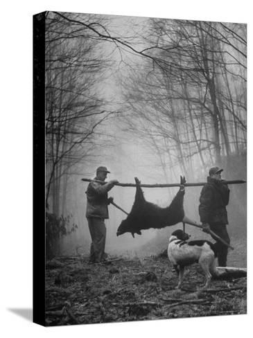Jim Atchley and Dr. Ray Atchley Carrying Boar That They Killed-Ralph Crane-Stretched Canvas Print
