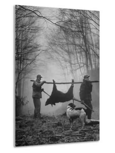 Jim Atchley and Dr. Ray Atchley Carrying Boar That They Killed-Ralph Crane-Metal Print