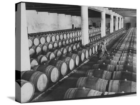 Cellar of Maturing Wines as Wine Maker Tests with Pipette-Carlo Bavagnoli-Stretched Canvas Print
