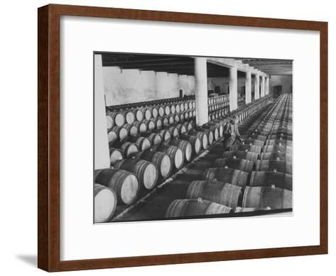 Cellar of Maturing Wines as Wine Maker Tests with Pipette-Carlo Bavagnoli-Framed Art Print