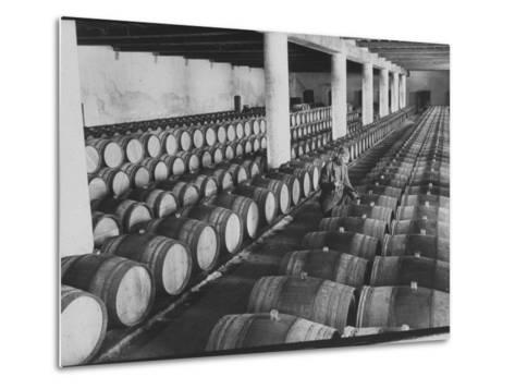 Cellar of Maturing Wines as Wine Maker Tests with Pipette-Carlo Bavagnoli-Metal Print