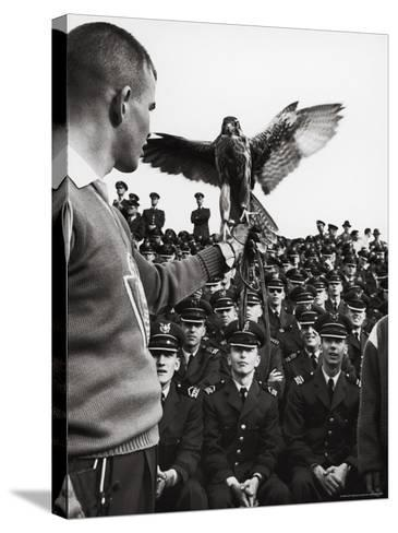 Air Force Academy Cadets Watching Handler Performing with the Air Force Mascot, a Falcon-Leonard Mccombe-Stretched Canvas Print