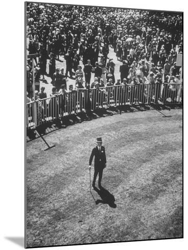 Man Standing in the Center of the Royal Enclosure at Ascot Race Track-Mark Kauffman-Mounted Photographic Print