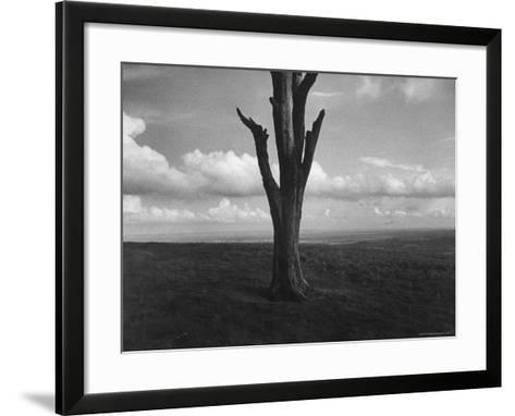 Malvern Hills, Where Robert Frost Once Lived-Howard Sochurek-Framed Art Print