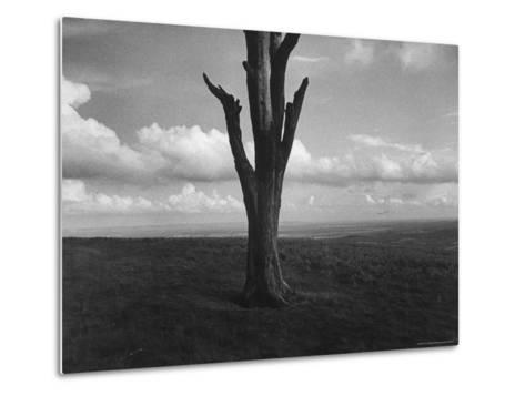 Malvern Hills, Where Robert Frost Once Lived-Howard Sochurek-Metal Print