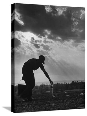 Farmer Watering the Crops-Ed Clark-Stretched Canvas Print