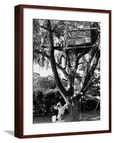 Children Playing in a Treehouse-Arthur Schatz-Framed Art Print