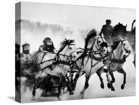 Troika Race at Hippodrome-Stan Wayman-Stretched Canvas Print