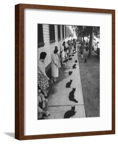 """Owners with Their Black Cats, Waiting in Line For Audition in Movie """"Tales of Terror""""-Ralph Crane-Framed Art Print"""