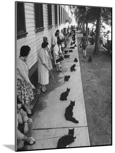 """Owners with Their Black Cats, Waiting in Line For Audition in Movie """"Tales of Terror""""-Ralph Crane-Mounted Photographic Print"""
