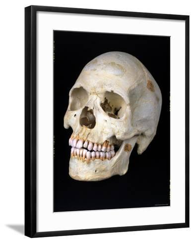 Modern Homo Sapiens Skull-Ted Thai-Framed Art Print