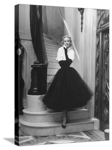 Short Wrap, Worn with Short Ball Gowns, Showing Off the Wearer's Waist-Nina Leen-Stretched Canvas Print
